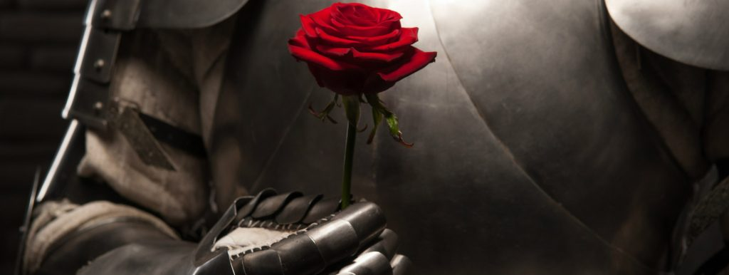looking for interesting things to do during quarantine - a knight in shining armor with a rose